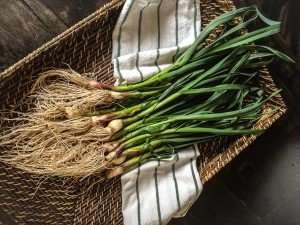 Green Garlic www.dailytiramisu.com